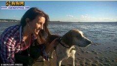 英国绑匪为钱绑架宠物狗 后被威胁鞭打致死