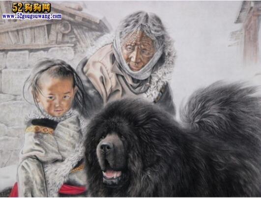 藏獒为主人报仇的故事