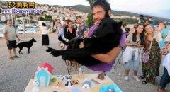 宠物狗沙滩酒吧:狗狗喝啤酒吃冰
