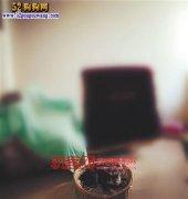 重庆:小夫妻偷偷养宠物 婆婆知