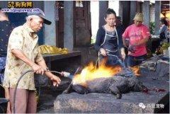 """印尼狗肉市场-狗狗地狱!称""""大"""