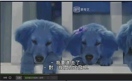 金毛犬电影-《神犬��家:神犬也��狂5》