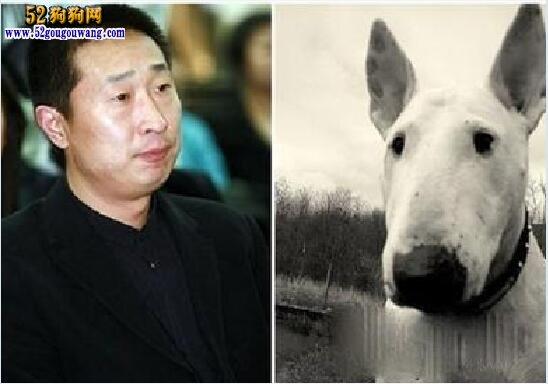 林永健和牛头梗合影