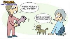 宠物狗打架受伤!特别熟悉的邻居