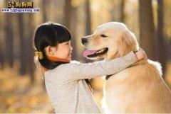 男子嫌宠物狗治疗费贵 当女儿面
