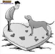 养宠物狗应每月驱虫!杜绝蜱虫和