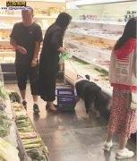 狗主人带宠物狗逛超市直