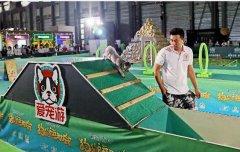 """亚宠展上海举办:""""狗狗"""