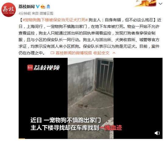 宠物狗跑下楼被保安当无证犬打死