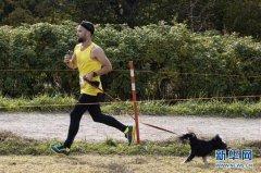 与狗狗一起赛跑、带宠物