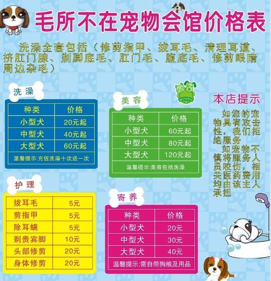 宠物店美容价格表2