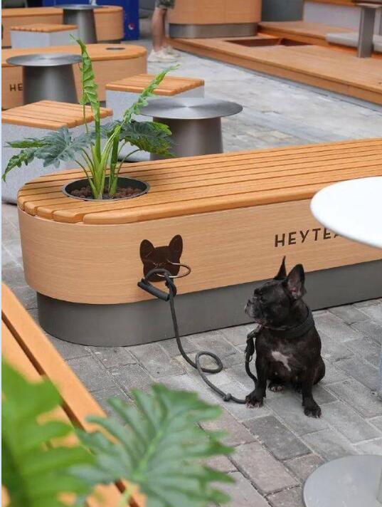以后可以带狗狗一起喝奶茶了! 深圳宠物友好主题茶饮店落地!