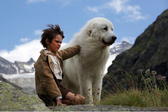 大白熊犬电影 - 灵