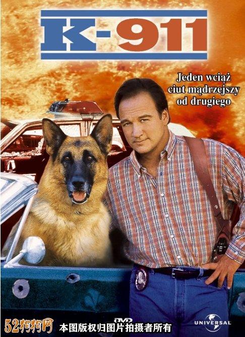 德国牧羊犬电影7