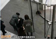 上海女子遛狗不栓