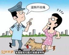 民法典:自家宠物狗被咬伤致死,肇事狗主人应该赔钱吗?