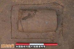 陕西发现汉代宠物狗墓葬
