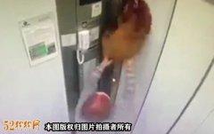 狗狗进电梯注意!巴西一