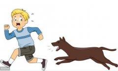 宠物狗追小孩被爸爸用脚
